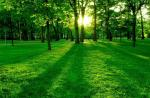 best-nature-wide-screen-full-hd-wallpapers-5136.jpg